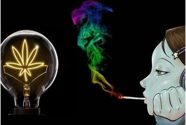Le Cannabis stimule la créativité, Mythe ou réalité ?